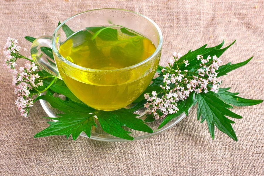 Medicinal tea from valerian herb leaves whit some leaves on the plate